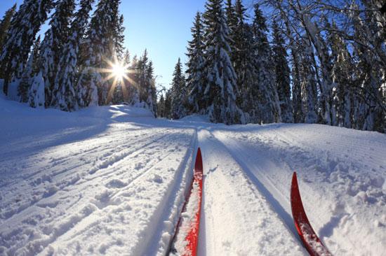Embracing Winter Snow Sports Dawn Green Writer