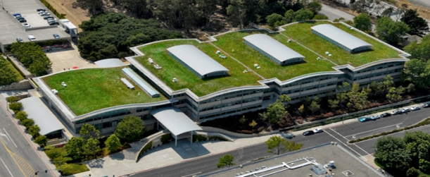 Green roof with solar panels on Gap corporate headquarters building